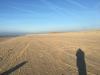 strand_hargen3